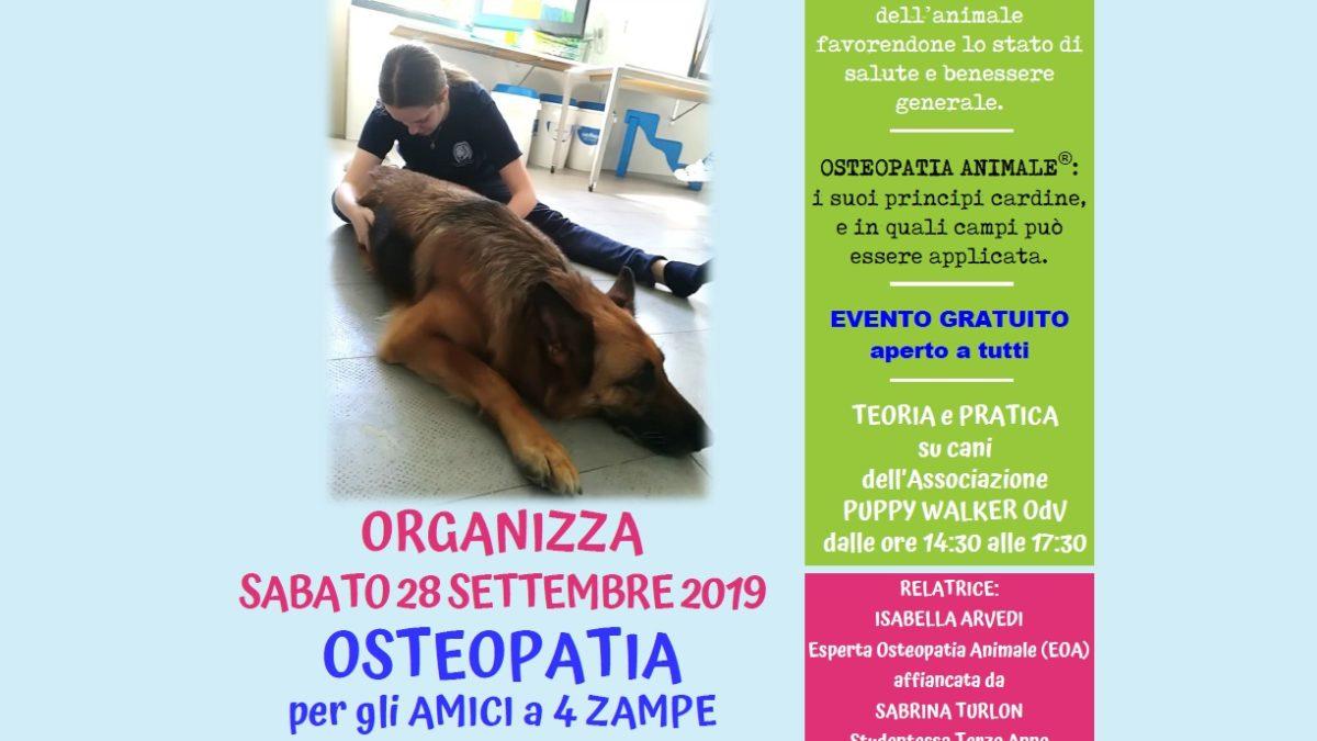 Osteopatia animale – Puppy Walker ODV